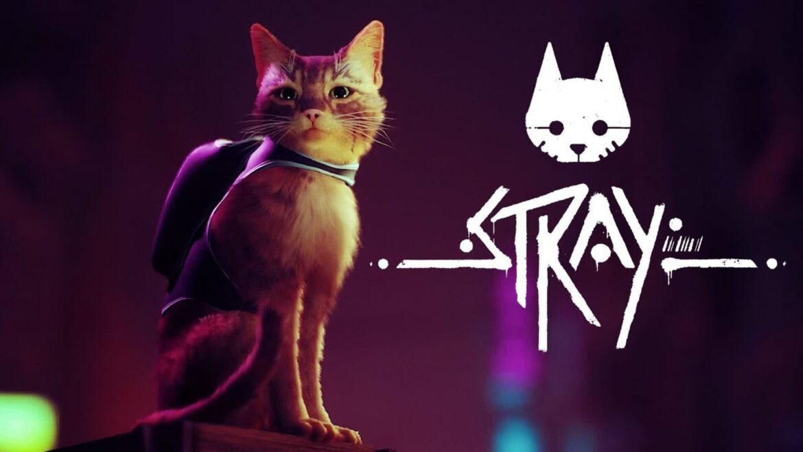 Stray is a compelling cat simulator heading to PlayStation and PC in early 2022